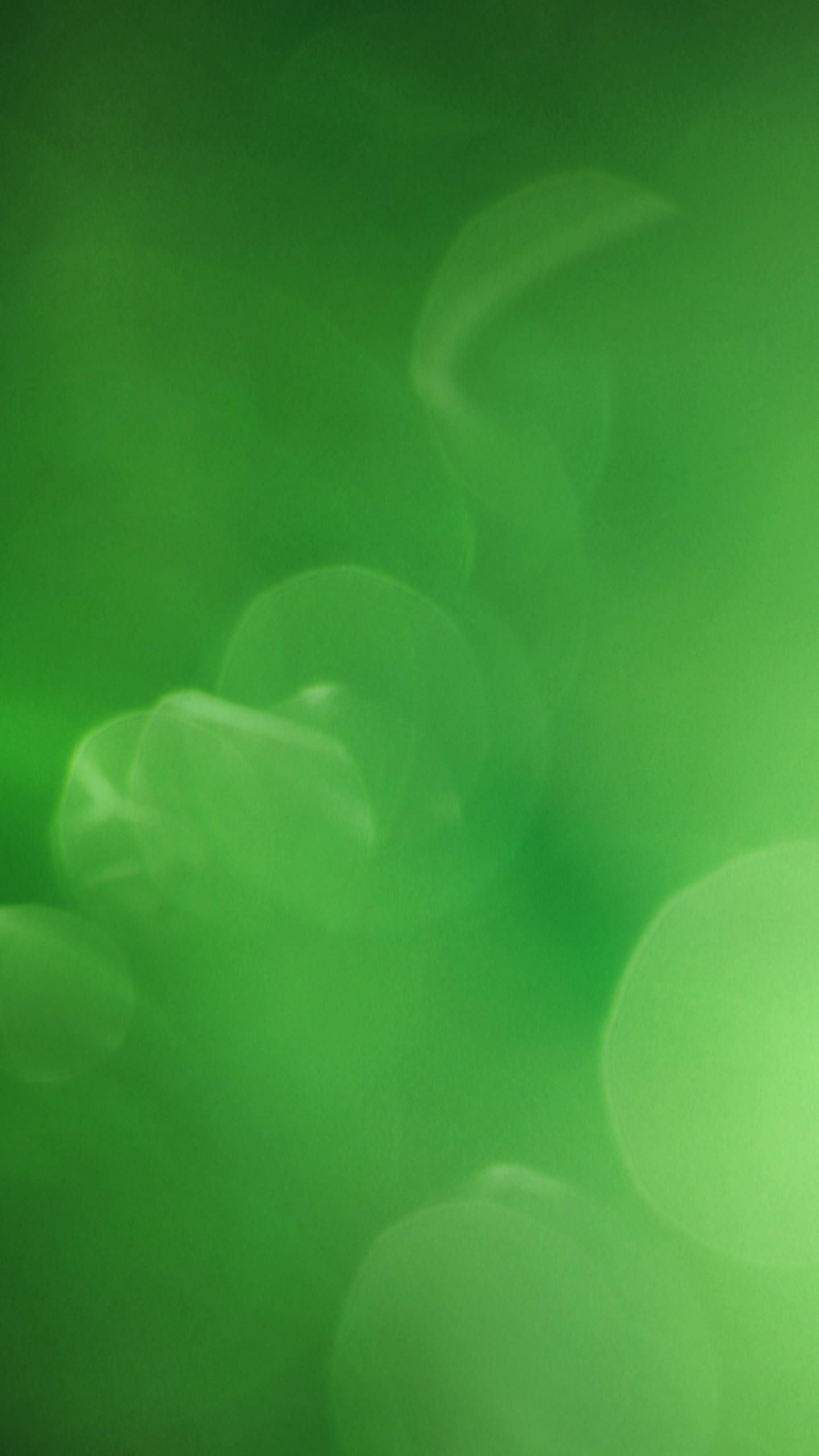 Cool green circle wallpaper smartphone smartphone quadhd wallpaper voltagebd Image collections