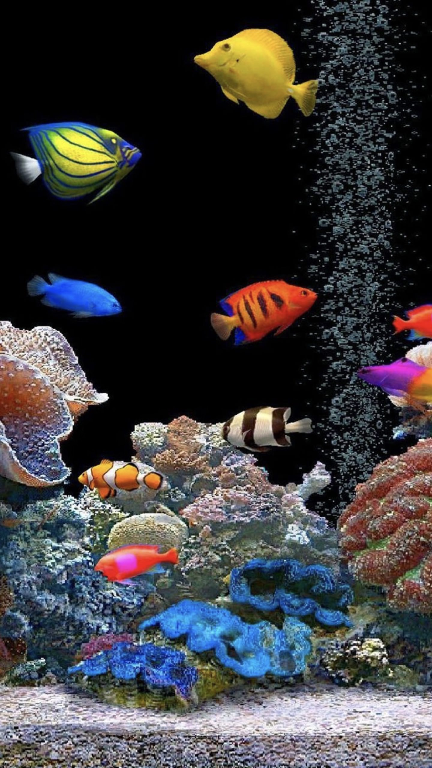 live wallpaper fish aquarium