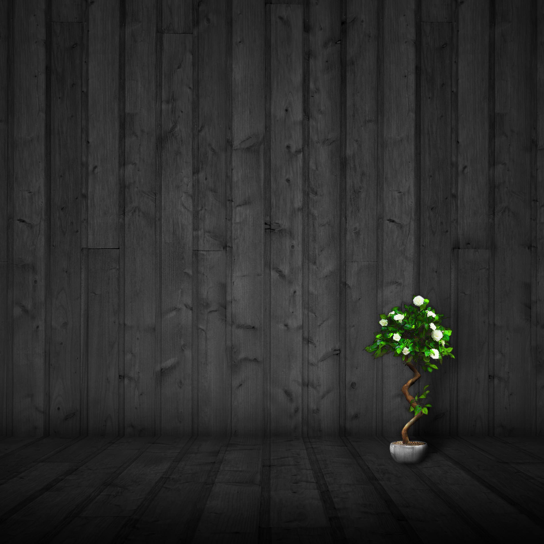 クール黒緑 Wallpaper Sc Ipad壁紙
