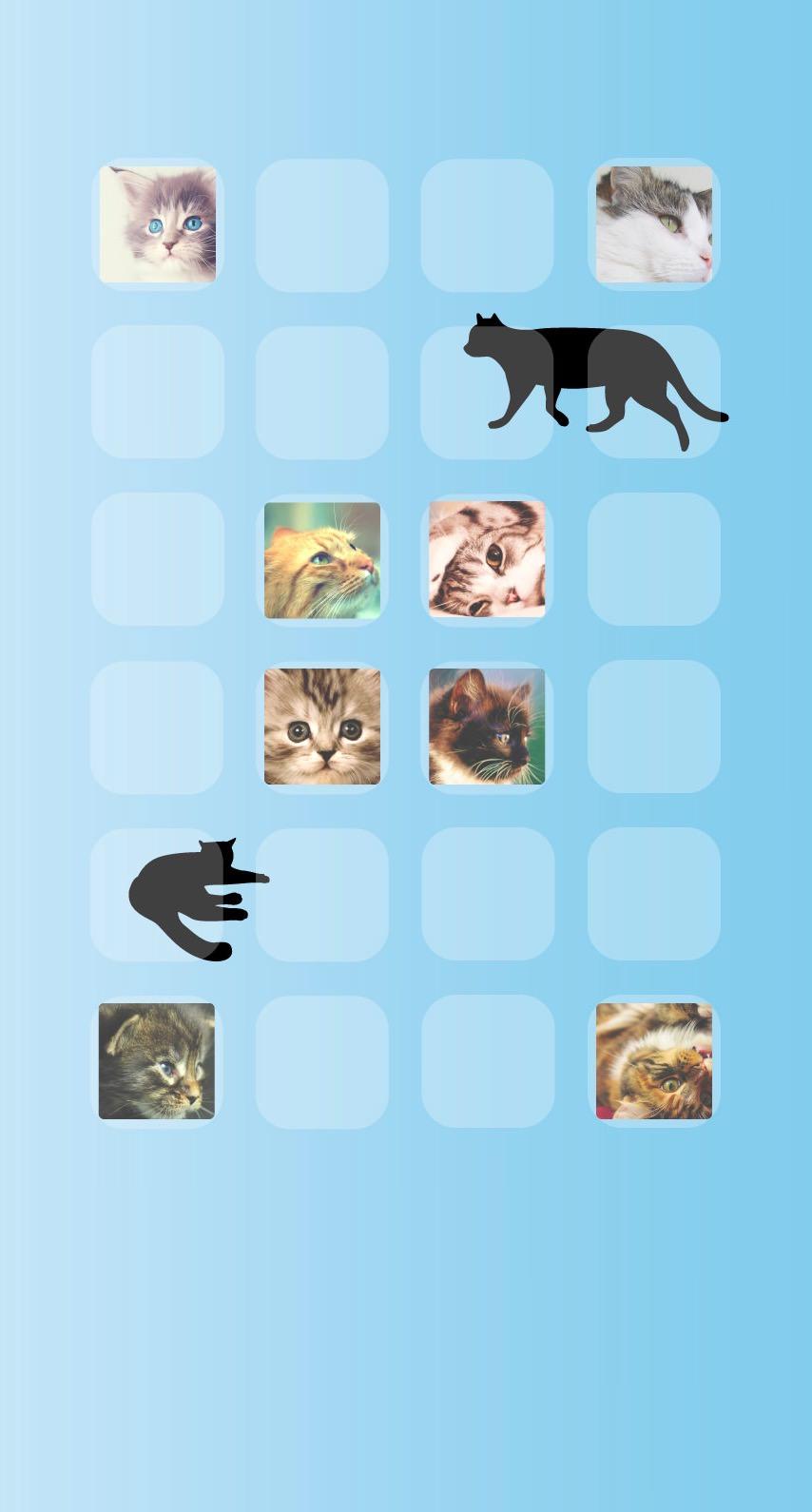 棚猫青の iPhone6s / iPhone6 壁紙