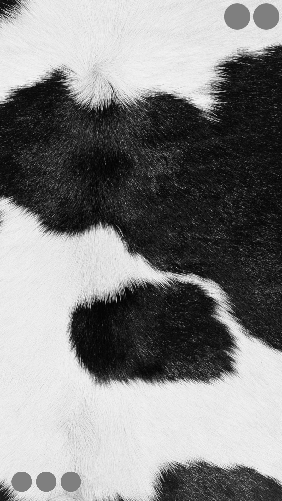 Fur Round Black And White Gray Wallpaper Sc Iphone6splus