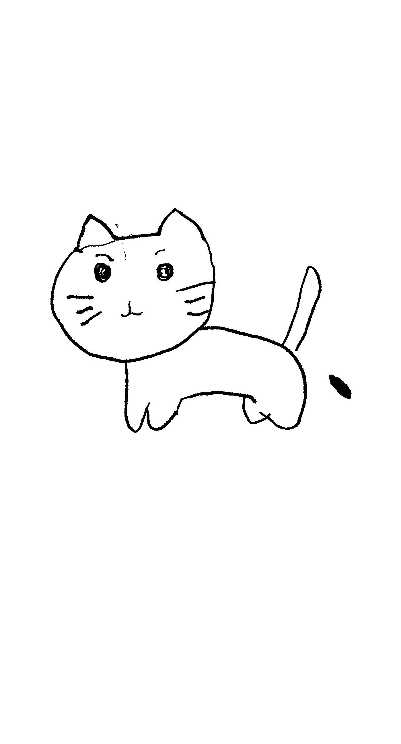 イラスト猫白