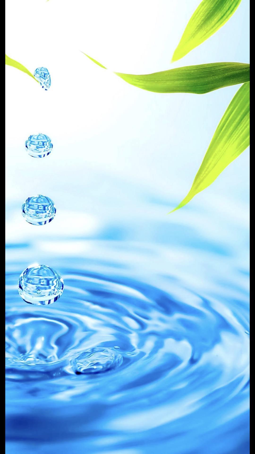 Waterdrop Leaves Wallpapersc Iphone7plus