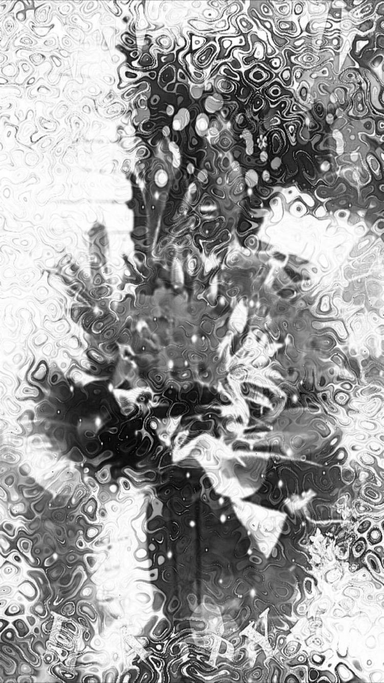 Bunga Hitam Dan Putih Wallpapersc IPhone8