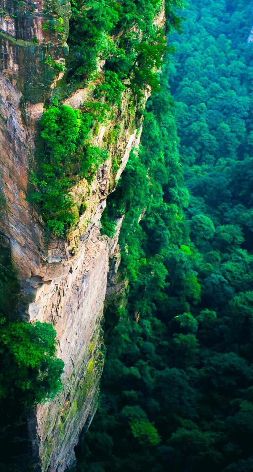 Download 770 Koleksi Wallpaper Pemandangan Alam Hijau Foto Paling Keren