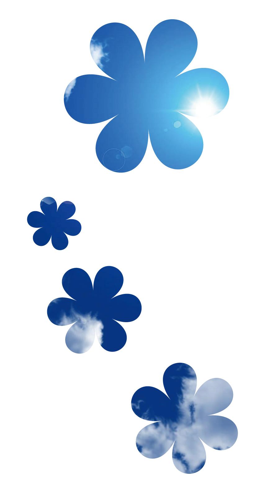 白青可愛い花シンプル Wallpaper Sc Iphone8壁紙