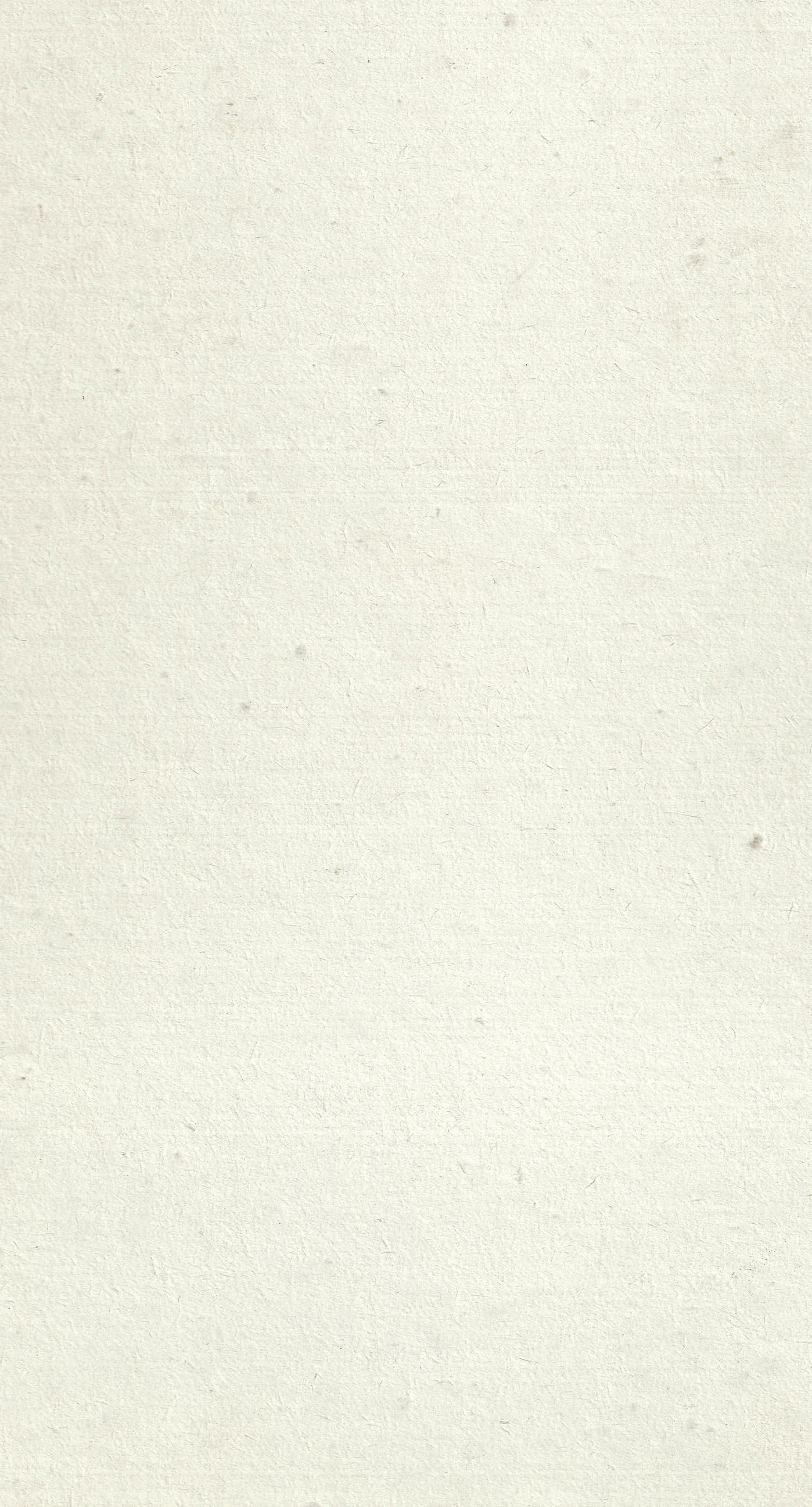 Waste Paper White Beige Wallpaper Sc Iphone8plus
