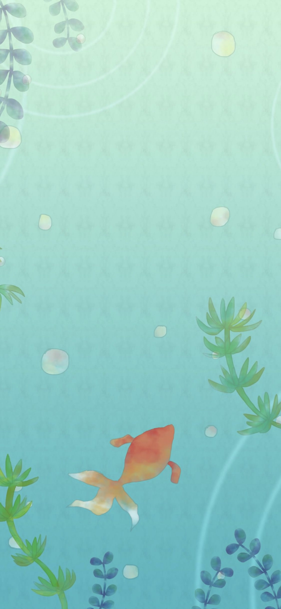 Goldfish Illustration Wallpaper Sc Iphonexs